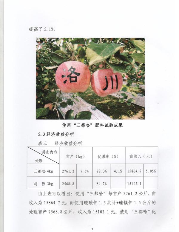 洛川4.jpg