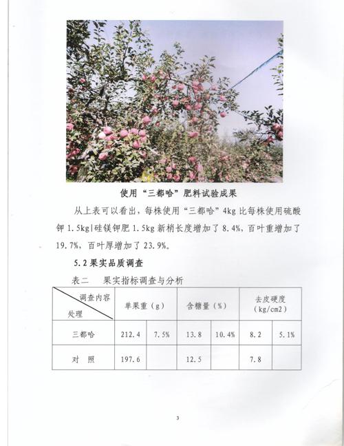洛川3.jpg