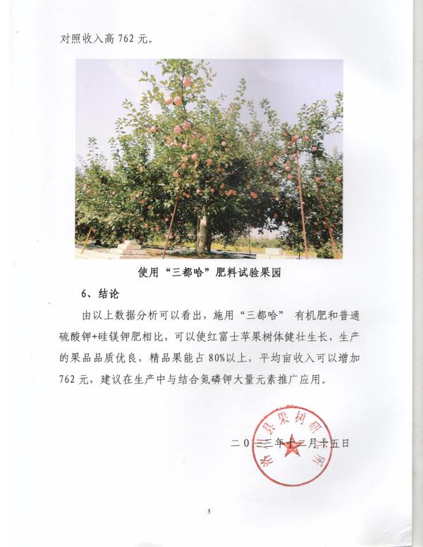 洛川5.jpg